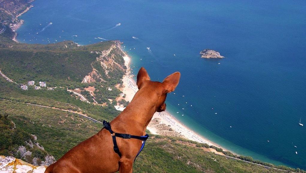 playas-wow-cerca-de-lisboa-guiajando