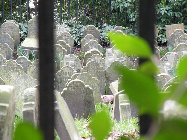 cementerio-de-mascotas-londres