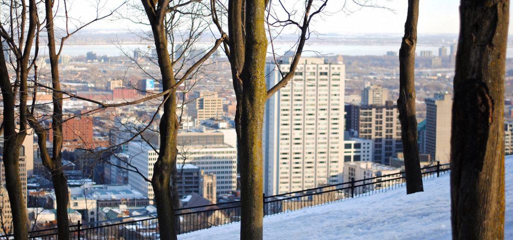 Vista desde Parque Mont Royal